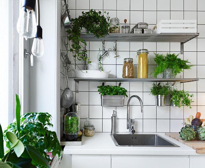 Đặt chậu cây xanh nhỏgóc bếp