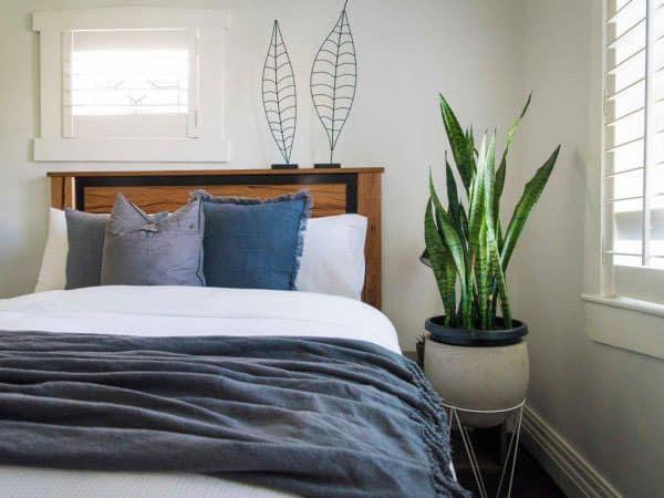 Cây xanh góc phòng ngủ
