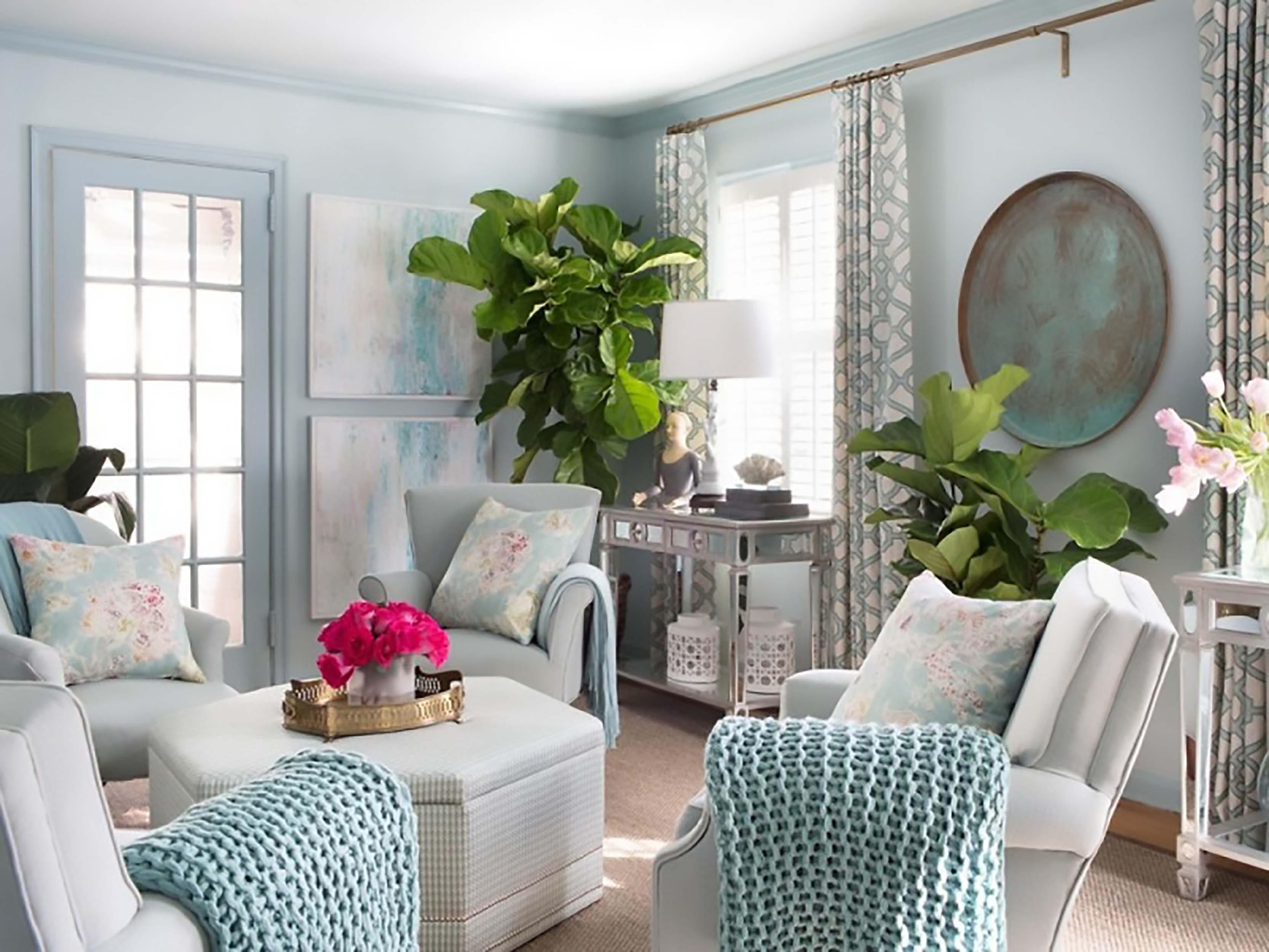 cây xanh phòng khách 3