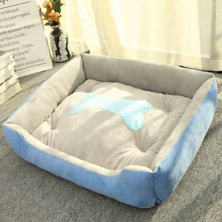 Giường ngủ đệm êm cho thú cưng