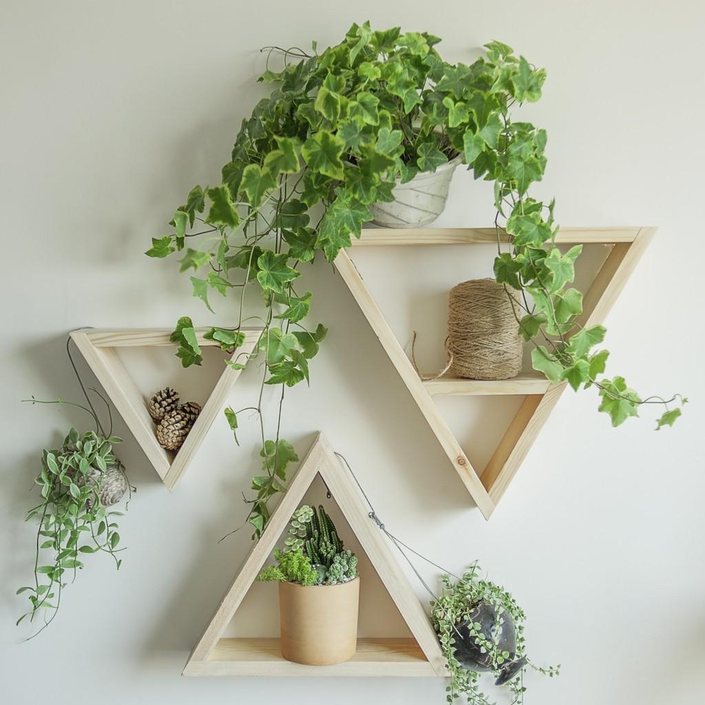 Kệ gỗ treo tường để cây cảnh 1