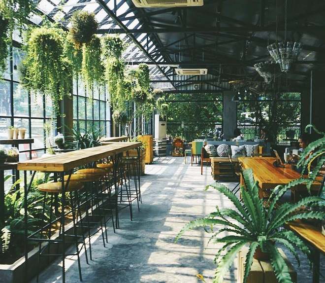 quán cafe ngập tràn sắc xanh